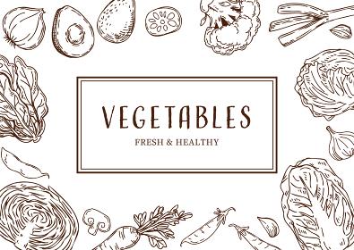 野菜の手描きイラスト フレーム