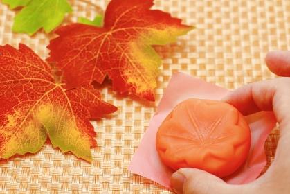 上生菓子 紅葉 秋のイメージ
