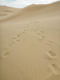 ペルー・ワカチナの砂漠で人間2人が通った足跡