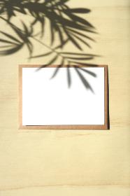 テーブルヤシの影と白いカード 6 縦位置