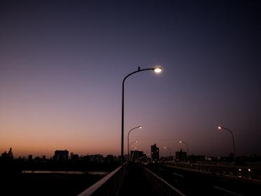 早朝の橋の風景 12月