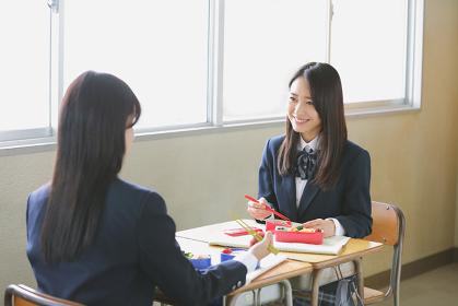 向き合って弁当を食べる女子高生
