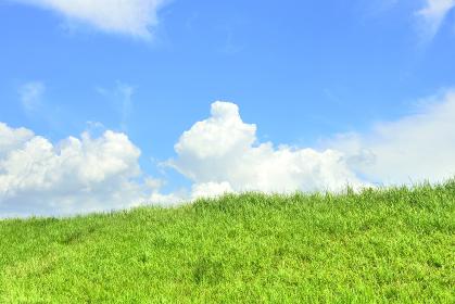 青空と野原と入道雲