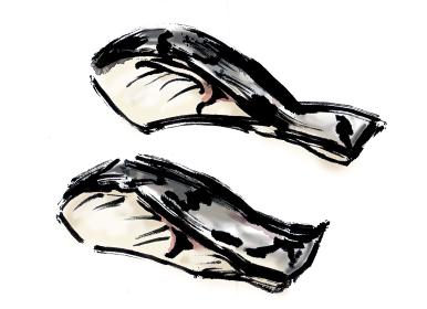 たらの切り身の和風手描きイラスト素材
