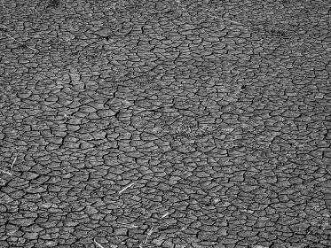 乾燥して干上がってしまった池の底にたまっていた土