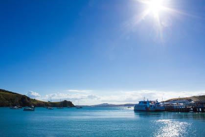 ワイヘキ島の船乗り場からの風景