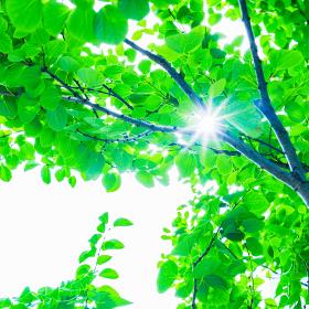 太陽光 再生可能エネルギー 【 ゼロエミッション イメージ 】