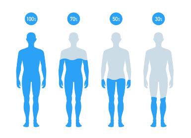 人体の水分割合の図