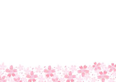 水彩で描いた桜のイラスト