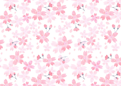 水彩で描いた桜の模様