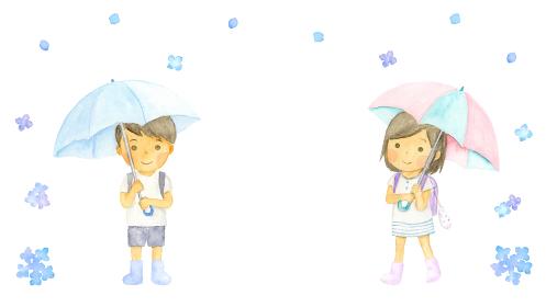 傘をさしている通学中の子どもと雨とあじさい
