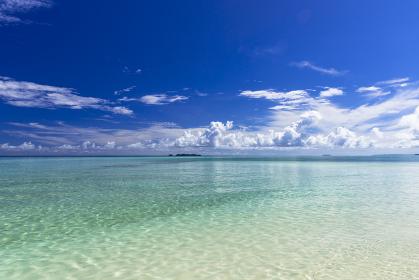 パラオ ロック・アイランド サンゴ礁の海