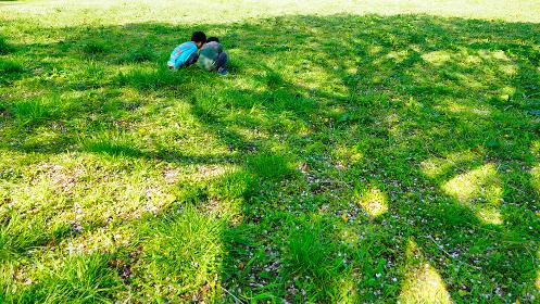 広場で虫探す二人の子ども