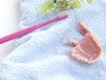人工歯、総入れ歯 オーラルヘルスケアのイメージ
