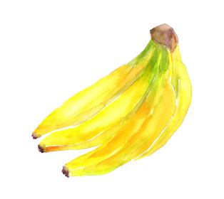 水彩で描いたバナナのイラスト