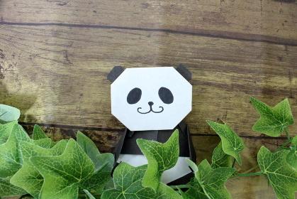 こっそり草むらから顔を出すパンダのイメージ