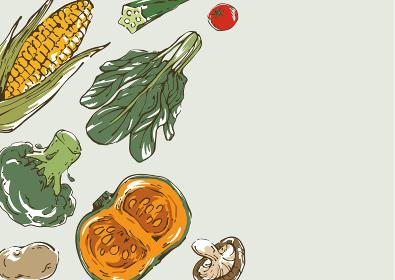 おしゃれな野菜のスケッチイラスト 背景フレーム