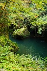 加賀温泉郷、山中温泉の鶴仙渓の渓流