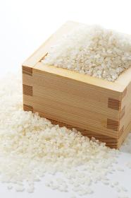 お米と木のスプーン