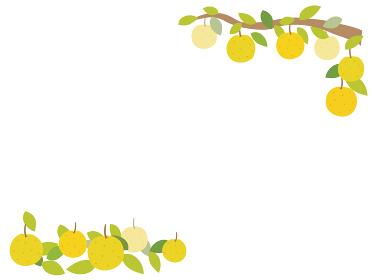 梨のフレーム コーナー