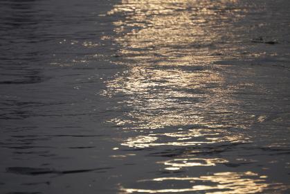 夕日に照らされてキラキラと輝く黄金色の海