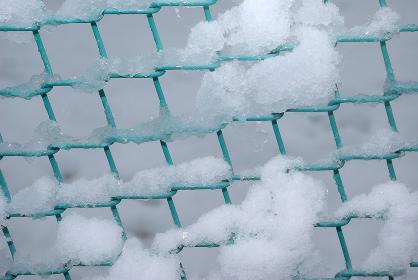 雪が積もるフェンスの金網