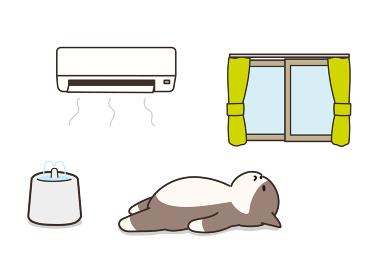 エアコンが付いた部屋で眠る猫 熱中症対策 給水器