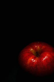 りんご (サンつがる)