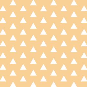 鱗模様 オレンジ 6