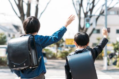 桜の木の下で手をつないで登校する小学校高学年生と小学1年生
