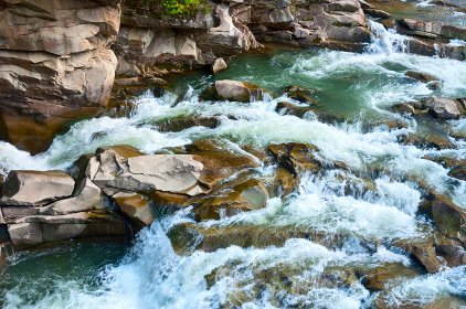 Rapid mountain river in the Carpathian mountains. Nature of Ukraine.