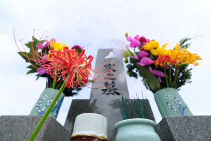 広大な空とお墓の前に咲く彼岸花のイメージ