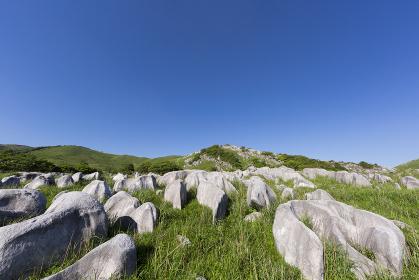 北九州国定公園平尾台 茶ヶ床付近より岩山方面を望む