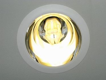 省エネ蛍光ランプ