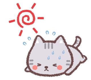 熱中症のネコと太陽