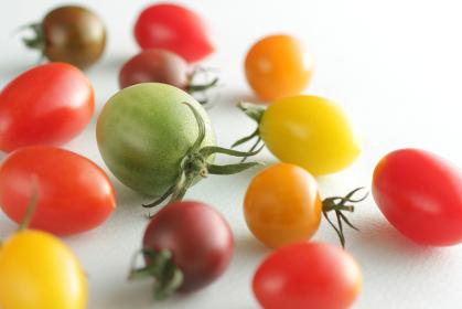 カラフルな色のミニトマト