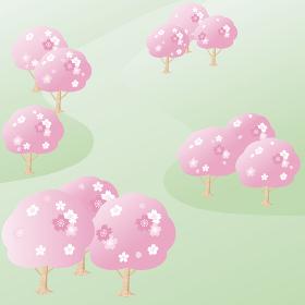 春 桜 さくら 緑 公園 風景 フレーム 背景 コピースペース イラスト