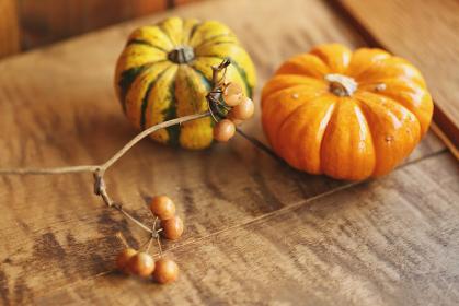 かぼちゃと木の実