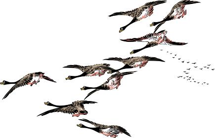 浮世絵 鳥 その23