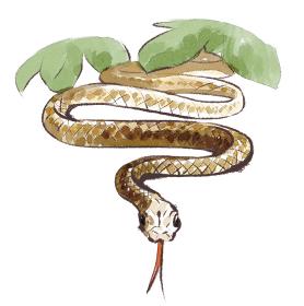 巳 蛇 へび
