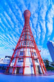 ポートタワー 神戸 神戸タワー 【神戸市のランドマーク】