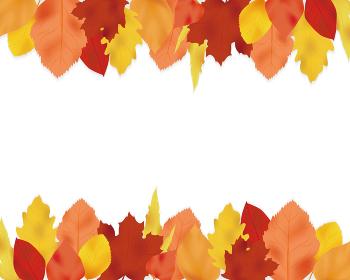紅葉した葉っぱが上下にあるフレーム