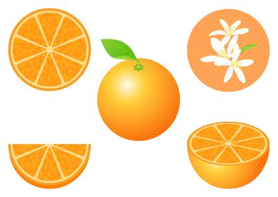 オレンジのフルーツカットと花のセット