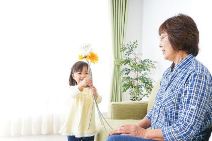 祖母に花をあげる子ども