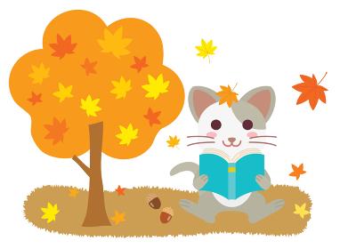 読書の秋に本を読むネコ
