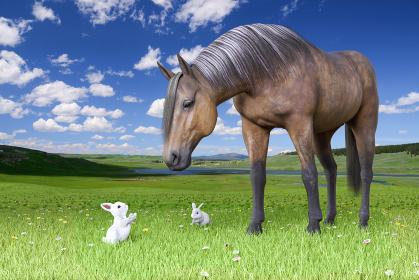 毛並みの美しい馬が小さな白いウサギと広い草原で挨拶をする