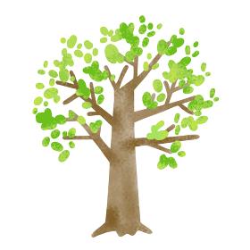 爽やかな新緑の木の素材イラスト