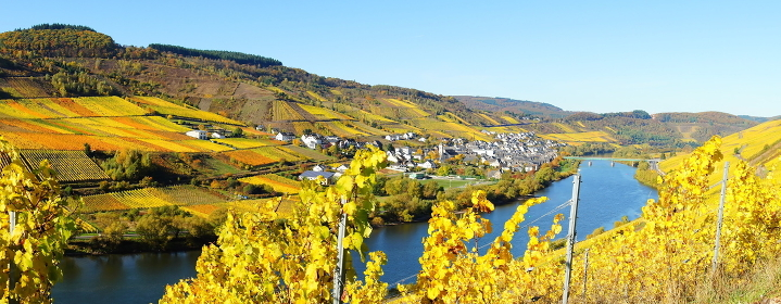 mosel valley panorama\r\n