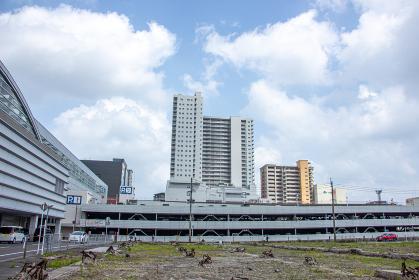 鹿児島中央駅西口から見た商業施設 鹿児島中央タワー