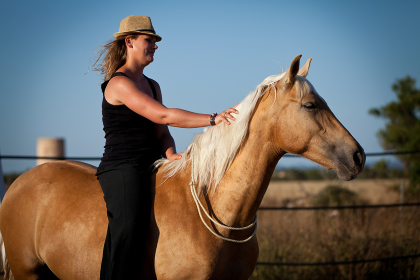 young female horsewoman trained her horse outdoors in summer